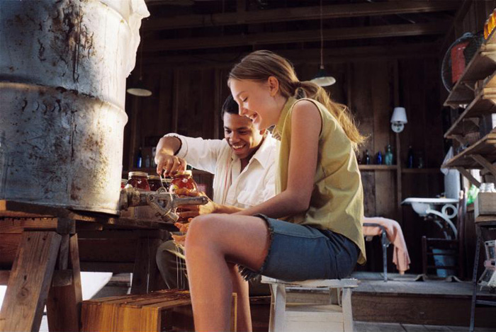 The Secret Life of Bees - Dakota Fanning